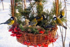 """Акция """"Покормите птиц зимой"""""""
